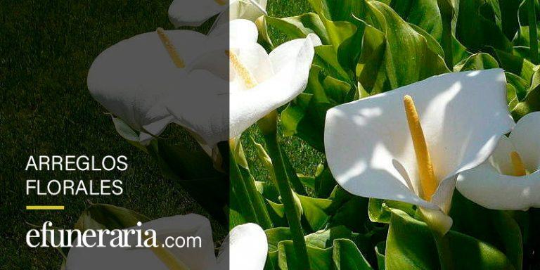 arreglos florales para difuntos